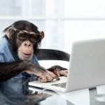 Успешное вживление в мозг обезьяны чипа для игры в видеоигры